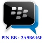 pin-bb-ani-new